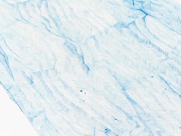 Détail, crayon bleu sur canson, 2013