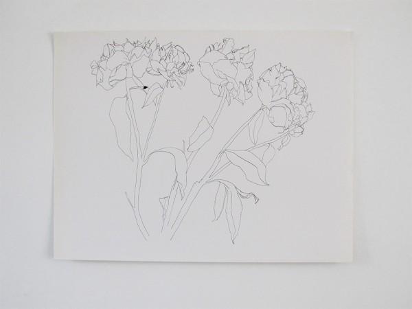 Frondaison #01 50x65, encre de chine sur papier canson.