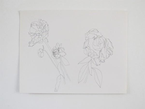 Frondaison #012 50x65, encre de chine sur papier canson.