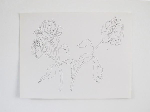 Frondaison #04 50x65, encre de chine sur papier canson.