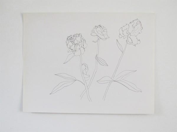 Frondaison #05 50x65, encre de chine sur papier canson.