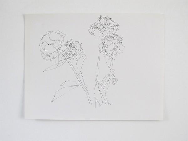 Frondaison #06 50x65, encre de chine sur papier canson.