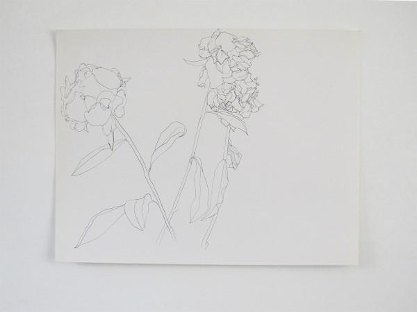 Frondaison #07 50x65, encre de chine sur papier canson.