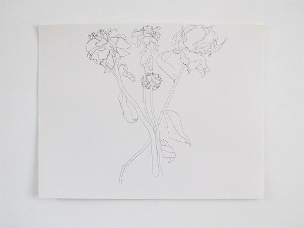 Frondaison #08 50x65, encre de chine sur papier canson.