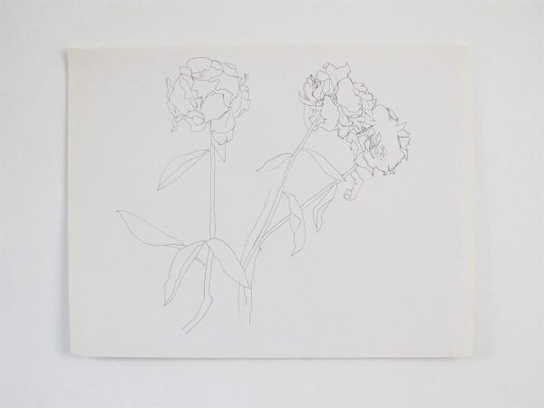 Frondaison #09 50x65, encre de chine sur papier canson.